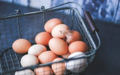 How to increase poultry profit levels with Libelium Sensors