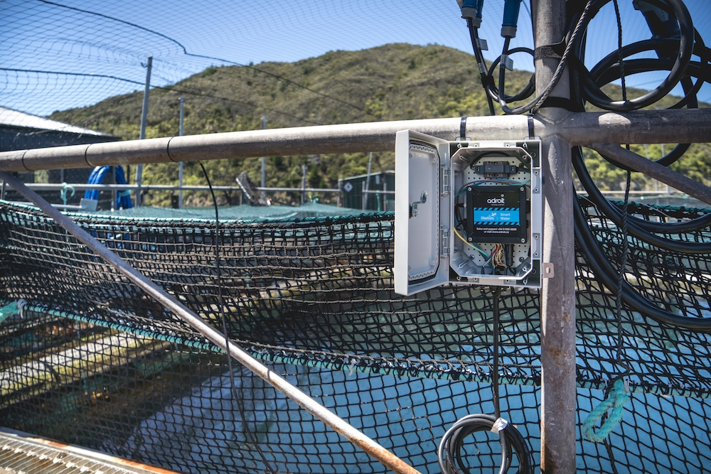 smart water technology for New Zealand King salmon monitoring