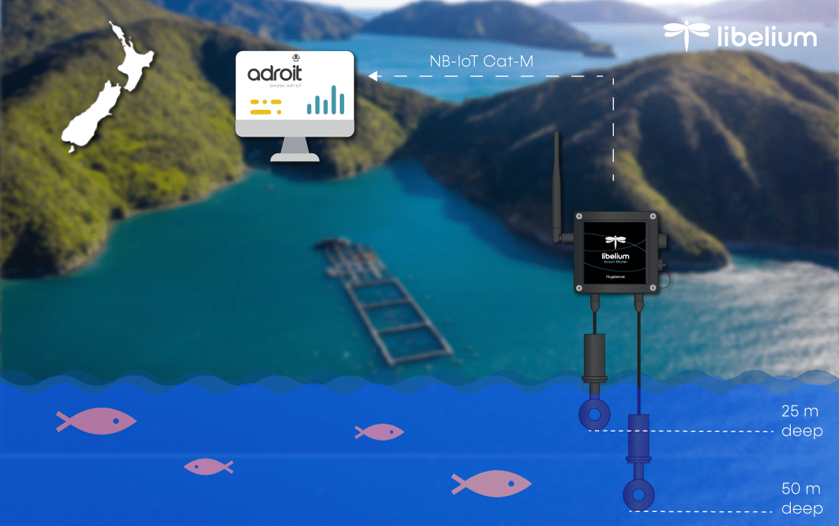 smart water new zealand for salmon farming