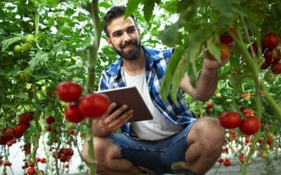 Precision agriculture and automatic irrigation in organic crops with Libelium's IoT technology